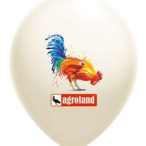 Baloane personalizate 1 fata 5 culori